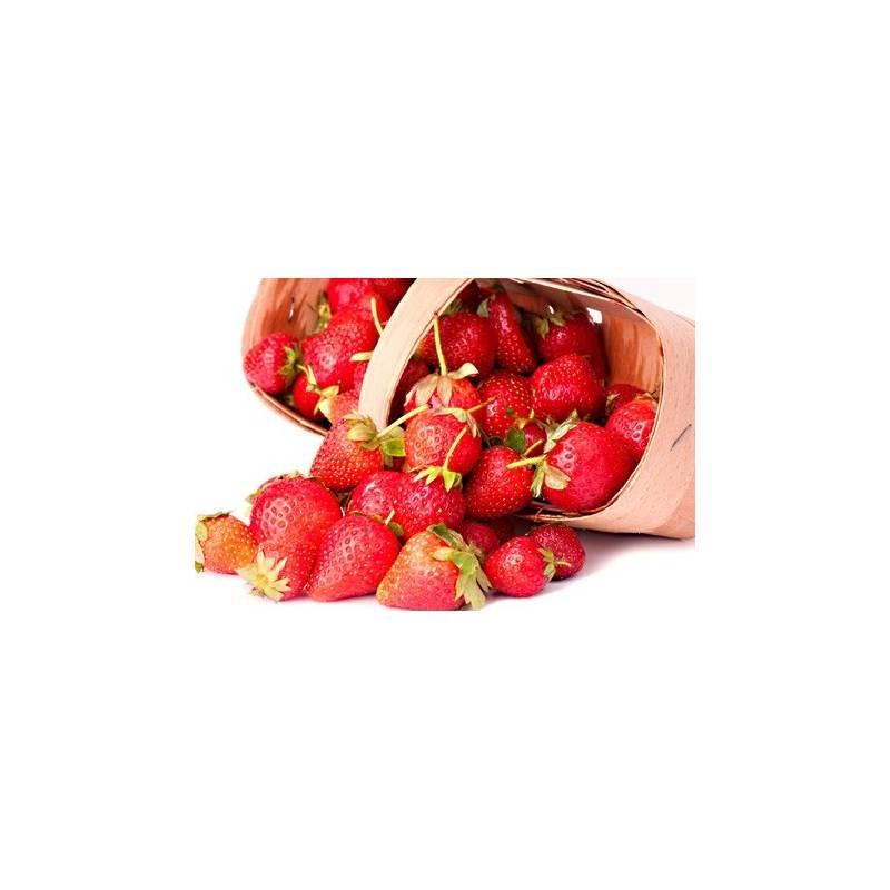 fraisiers remontants mara des bois en pot plant fruit. Black Bedroom Furniture Sets. Home Design Ideas