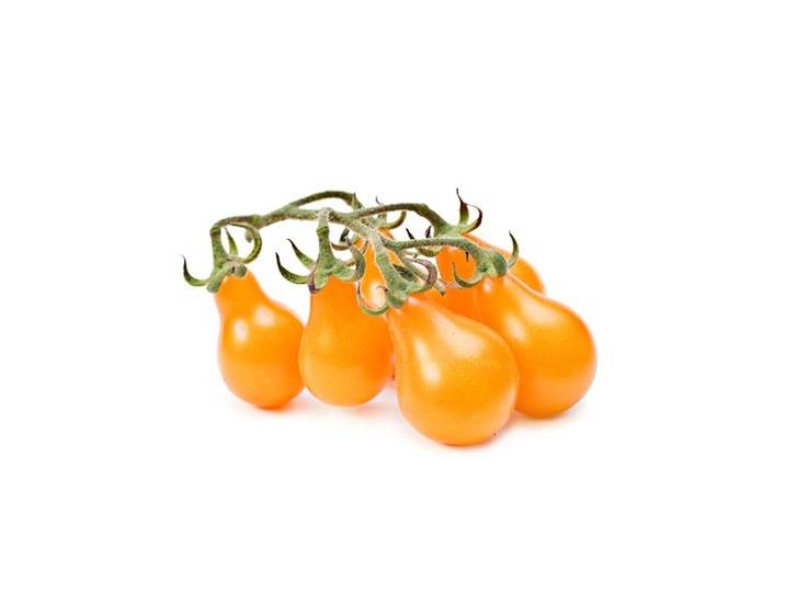 Tomate cerise jaune Yellow Pearshaped