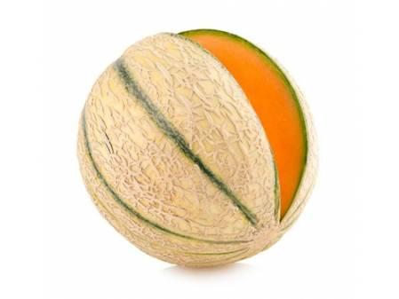 Melon charentais Troubadour